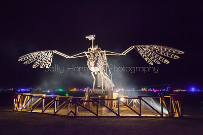 Fledgling ~ Burning Man 2014 Art Installation