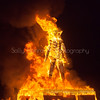 The Burn~Burning Man 2015
