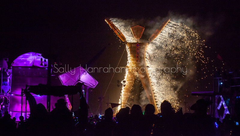 The Burn~Burning Man 2014