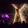 The Burn~Burning Man 2014