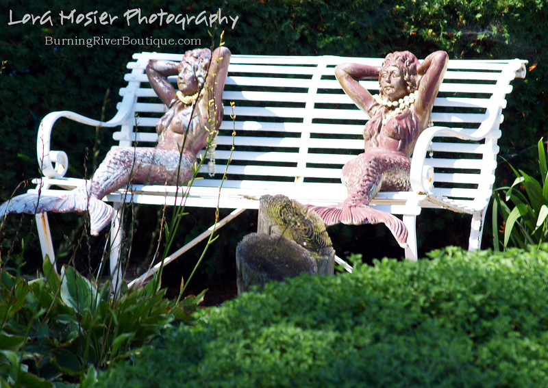 Lounging Mermaids by Lora Mosier<br /> <br /> These girls were just hanging out, soaking up the sun in Put-in-Bay, Ohio.