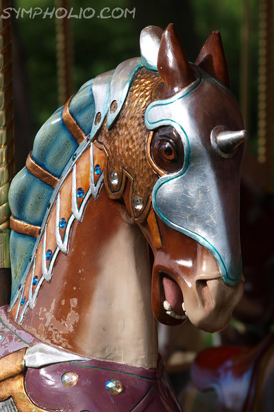 """Knight of the Round Table by Lora Mosier<br /> <br /> This guy is part of Kimberly's Carousel in Put-In-Bay, Ohio.<br /> <br /> Kimberly's Carousel is one of the few merry-go-rounds still in operation.<br /> <br />  <a href=""""http://www.burningriverboutique.com"""">http://www.burningriverboutique.com</a>"""