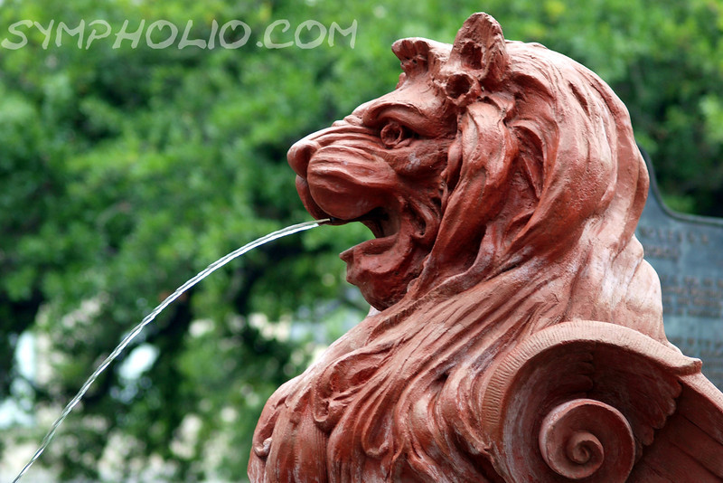 "The Not So Cowardly Lion by Lora Mosier<br /> <br /> This fountain is in Savannah, GA just about River St.<br /> <br /> So, would you rather have a lion roar at you or spit at you?<br /> <br />  <a href=""http://www.burningriverboutique.com"">http://www.burningriverboutique.com</a>"