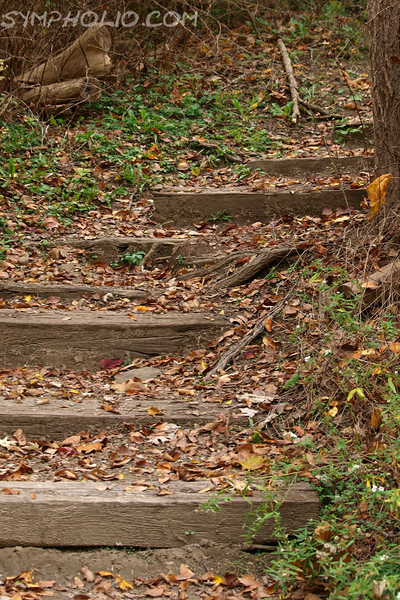 """Going Up by Lora Mosier<br /> <br /> These wood stairs can be found in Peninsula, Ohio.<br /> <br />  <a href=""""http://www.burningriverboutique.com"""">http://www.burningriverboutique.com</a>"""