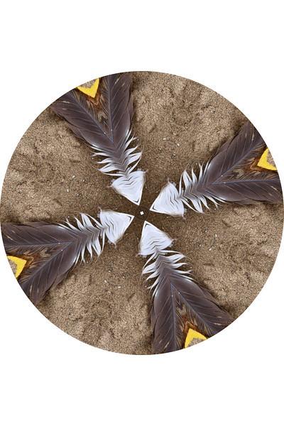 Sandy Feather