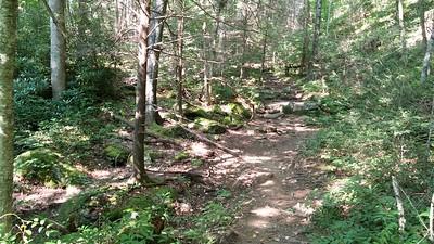 Treacherous trail!