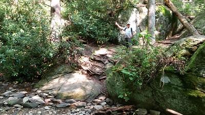 Dennis and the treacherous terrain!