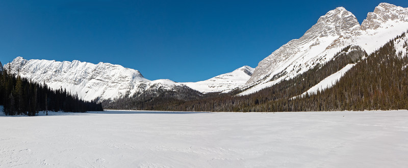 Ten cm of cold dry snow made for fast easy travel, using blue xc wax across the flats towards the Burstall pass area at centre horizon. No matter how many times I've been here, the unfolding view on a day like this always amazes. Click image to enlarge, back button on browser to return.