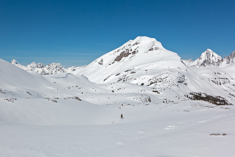 A look back at my route from north Burstall Pass, which is in the middle, below Snow Peak.