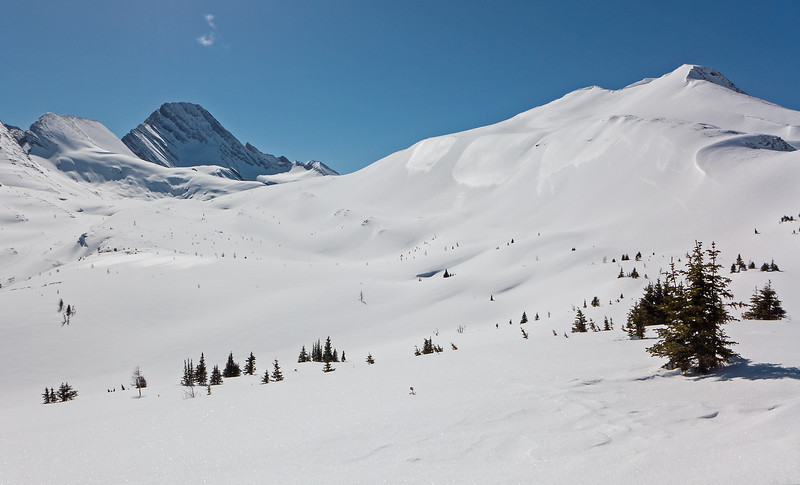 South, to the middle route leading to south Burstall Pass, a bit left of centre.