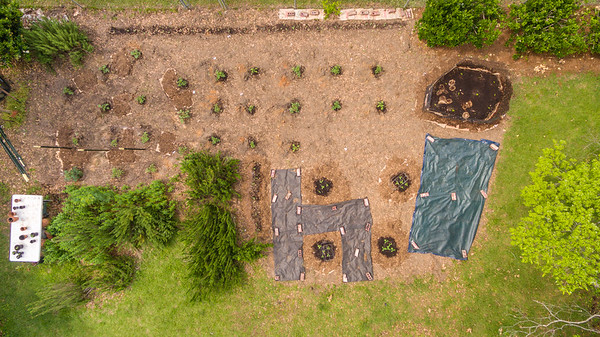 Vegatable Gardening; Drone Photography