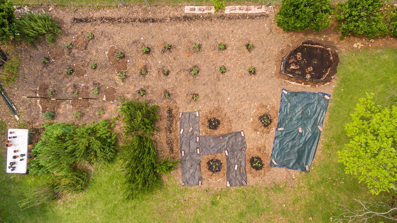 Vegatable Gardening; Drone Photography