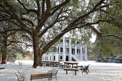 Wavering Place Plantation