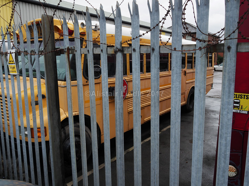 1995 International Harvester 3600 American School Bus Michigan