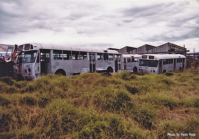 Ex MTT Adelaide Leyland Worldmaster/Freighter Bodies. Photo taken at Northmead Depot in 1983. (Image from the Peter Reid Collection)