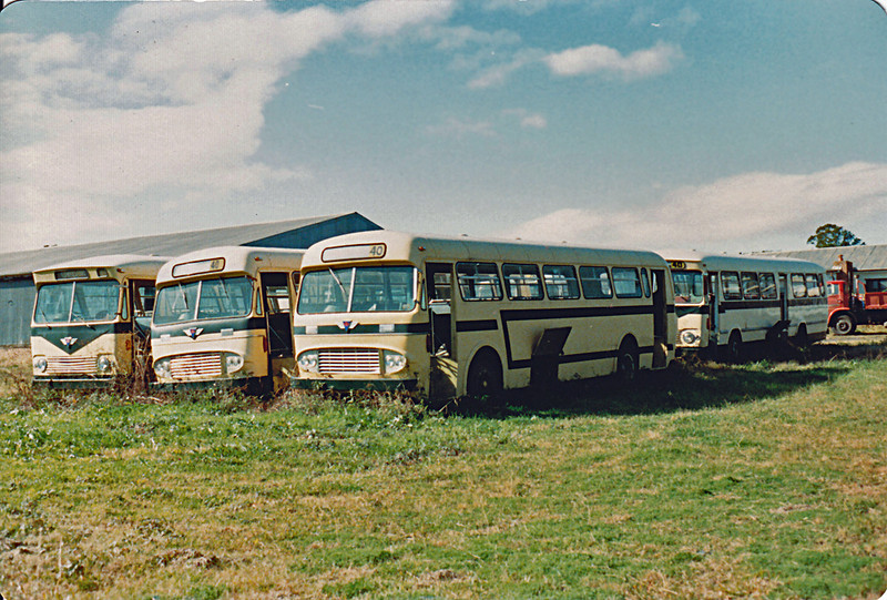 De-registered AEC Reliance's at rear of depot. Photo taken in 1983