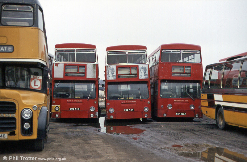 Three former LT DMSs at Burton in 1984: DMS2044 (OUC 44R), DMS2042 (OUC 42R) and DMS120 (EGP 120J). DMS2042 was last recorded as having been exported to France in 2004.