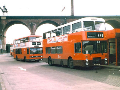 The pigeon was as taken by the line up as I was: one of the first GMPTE Leyland Olympians, 3006 (ANA6Y) and one of the Leyland Titans, 4014 (GNF14V) in Stockport Bus Station, 4th June 1983