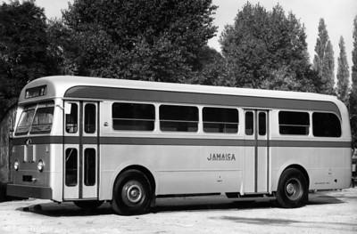 Jamaica Omnibus Services