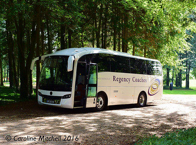 Regency Coaches JD16BUS, Sculpture at Goodwood, Sussex, 4th October 2016