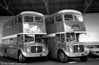 A pair of former Rhondda Transport Northern Counties H37/28F bodied AEC Regent Vs at Porth, built in 1965 and 1963 respectively; H165 (ETX 479C) and H564 (473 UNY).