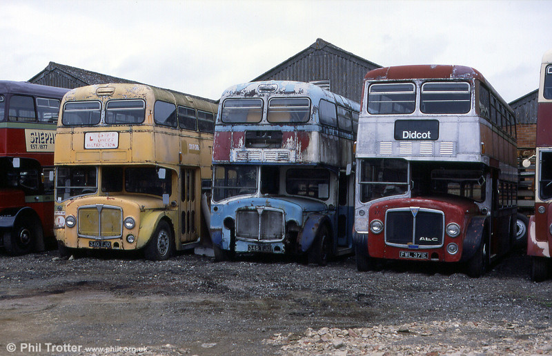 A brace of three AEC Renowns at the Oxford Bus Museum in July 1999. Left to right: 340/5 (340/5 TJO) with Park Royal H38/27F and 371 (FWL 371E) with Northern Counties H38/27F.