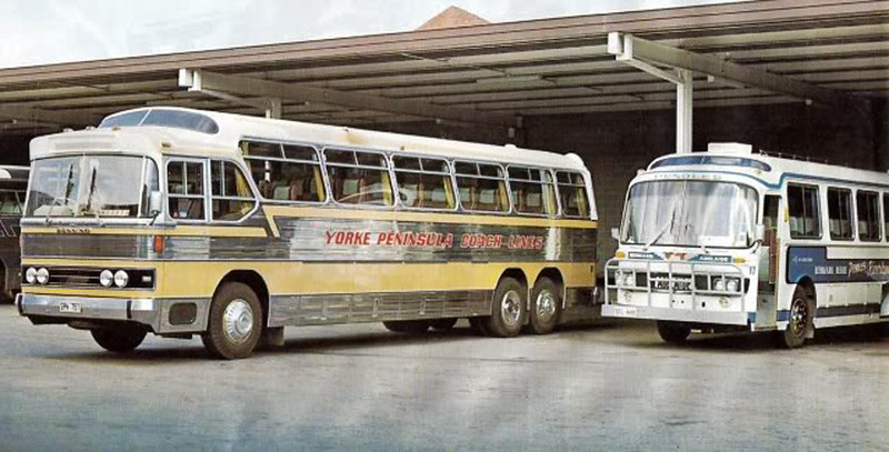 A Hino Coach of Pendles on the right. (Image from the Pendle Family Collection)