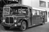 <DIV ALIGN=left>When, in March 1952, South Wales Transport took over the fleet of Llanelly & District Traction, it inherited an interesting, if ageing, bus fleet. Included were, of course, the double deck trolleybuses which ran on the principal town services in Llanelli and these have been well documented elsewhere. There was also a fleet of AEC Regal single-deckers, some dating back to the 1930s, with low-height bodywork for use on routes L7 and L8 (Penyfan to Morfa and Machynis) in the Llanelli Docks area which had several bridges with a clearance of only nine feet. Clearly, these buses would eventually need replacement but by the mid 1950s SWT's preferred supplier, AEC of Middlesex, had switched single deck bus production for the home market to the Reliance. This model had a high floor line to accommodate its underfloor engine and therefore was unsuitable for the low-height bodywork need at Llanelli. SWT therefore opted for a low height single deck body fitted to its then standard double deck chassis, the AEC Regent V. In July 1959 the company took delivery of two unique single-deck vehicles which had the appearance of double deckers which had lost their upper floors!  Their 37 seat bodies were built by Charles H. Roe of Leeds.  The two vehicles were numbered 33 and 34 (TCY 101-102) in the SWT fleet and their light body weight meant that they could show a good turn of speed!  Seen at Ravenhill when new is 34 (TCY 102) an AEC Regent V/Roe B37F.</DIV>