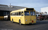 Former Thomas Bros. 123 NTX, a 1962 Leyland Tiger Cub/Alexander B45F seen at Ravenhill after conversion to an engineering vehicle.