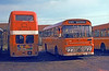 Ford R1014/Willowbrook B45F 240 (RWN 240M) with a rear view of former Midland General Bristol LD6G/Eastern Coachworks H33/25RD 908 (261 HNU).