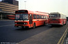 One of a batch of five Leyland National 2 B52F added in 1979-80, 817 (CCY 817V).