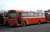 1981 Bedford YMQ/Duple B43F 291 (FCY 291W).