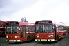 Leyland National. B52F bodied examples 706 (LWN 706L) and 735 (TCY 735M) are seen at Ravenhill.