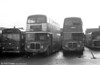 964 AEC Regent V/Weymann H39/32F 592 (425 HCY) alongside  AEC Regent V/Willowbrook H37/27F 635 (GWN 863D) at Ravenhill.