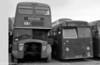 AEC Renown/Park Royal H39/32F 886 (ex-1245) (308 ECY) and ex-Western Welsh 305 (SBO 258) a Leyland Tiger Cub/Park Royal B43F at Ravenhill.