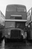 1964 AEC Regent V/Park Royal H39/32F 598 (431 HCY) after use as staff accomodation at Gorseinon awaiting disposal at Ravenhill.