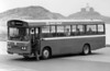 1981 Bedford YMQ/Duple B43F 291 (FCY 291W) when new.