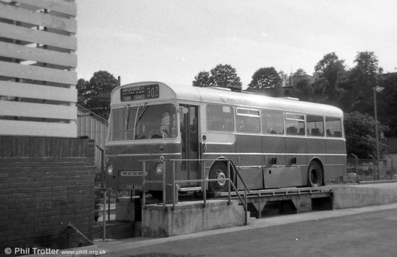 338 (HBO 384D), a Leyland Tiger Cub / Marshall DP41F , ex-Western Welsh at Haverfordwest.