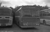 Ford R1014/Willowbrook B45F 259 (TCY 259N) with Bluebird, Neath.