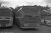 Ford R1014/Willowbrook B45F 259 (TCY 259N) with Bluebird, Neath.