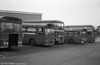 A line of mainly withdrawn vehicles at Ravenhill, including 436 (ex-1957) (NCY 288G).