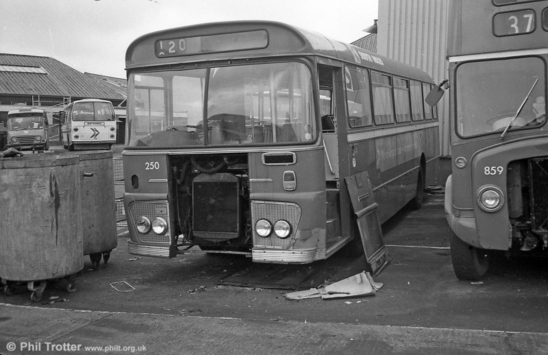 Ford R1014/Willowbrook B45F 250 (SWN 250M ) at Ravenhill.
