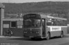 1981 Bedford YMQ/Duple B43F 287 (FCY 287W) at Pontardawe.