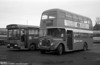 AEC Regent V/Willowbrook H37/27F 869 (CCY 989C) at Ravenhill with Lex B37F bodied Bedford YMQS 302 during the farewell tour of December 19th 1981.