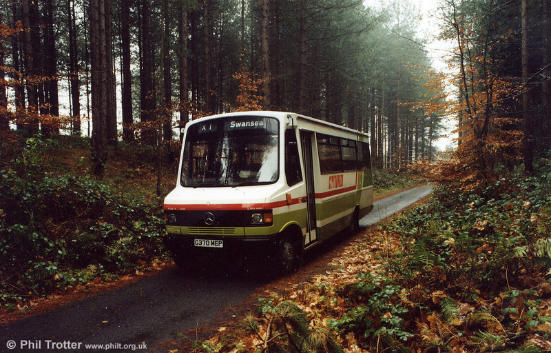 An autumnal scene with 370 seen posed in Pembrey Country Park.