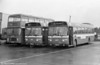 Bristol VRT 929 and Leyland Nationals 770 and 789 at Ravenhill.