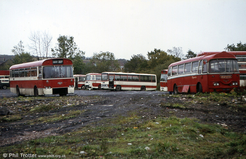 A general view of Eynon's yard at Trimsaran, illustrating the variety of vehicles owned by that operator.