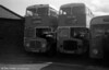 Two rather forlorn looking AEC Regent Vs at Glyntaff after withdrawal. Left is 93 (GTX 936D) with Longwell Green H34/26F, alongside 92 (ETG 388C) with Weymann H34/26F.