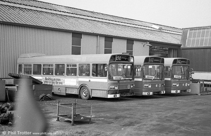 Three of East Kent's short Leyland National B41F were purchased by SWT and used for spares. These were 1541/2/5 (GFN 541/2/5N). All three are seen here at Ravenhill, Swansea.