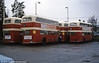 The rears of several AEC Regent Vs at Southampton.
